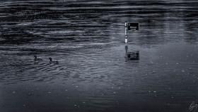 Der unsichtbare Weg - The unvisible way