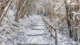 Verschneiter Pfad - Snowy path