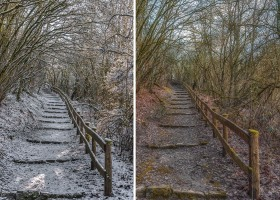 With and without snow
