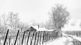 Schneeschauer - Snowfall (2)