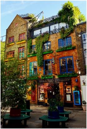 London 49