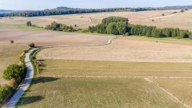 Feldweg - Dirt Road